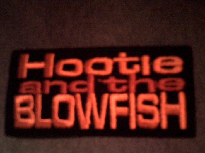 HOOTIE & THE BLOWFISH iron-on PATCH color logo darius VINTAGE
