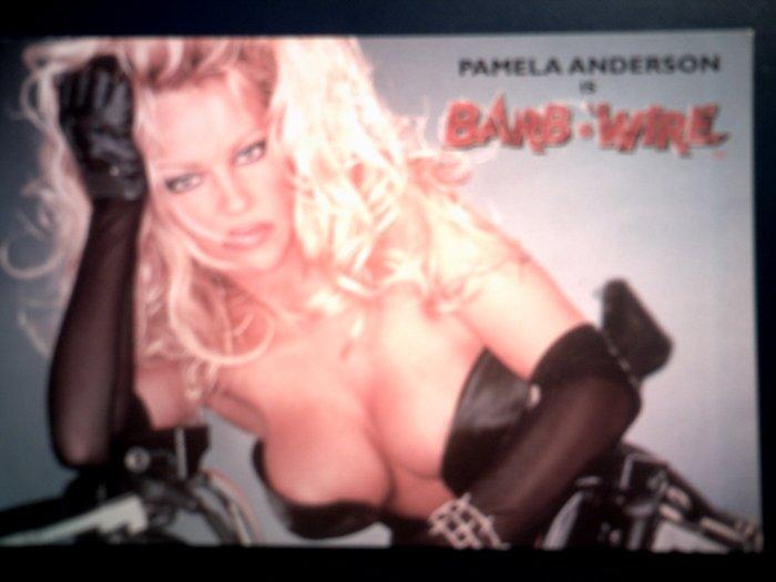 BARB WIRE POSTCARD Pamela Anderson IMPORT
