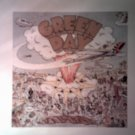 GREEN DAY STICKER Dookie album art BIG!