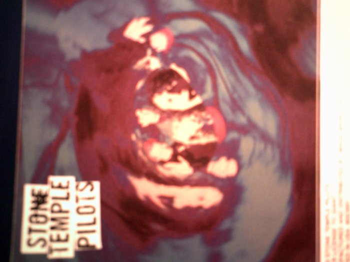 STONE TEMPLE PILOTS STICKER color band pic stp