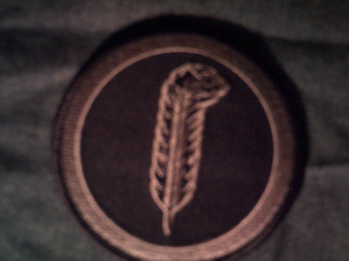 LED ZEPPELIN iron-on PATCH Robert Plant feather zoso logo