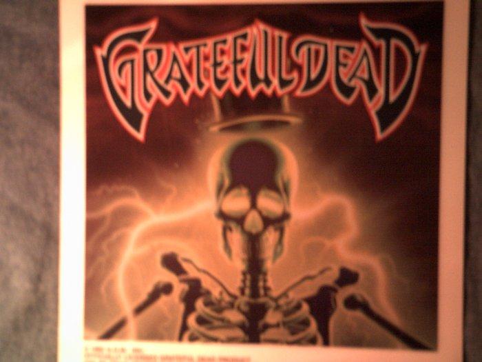 GRATEFUL DEAD DECAL not STICKER electric skeleton comix art VINTAGE