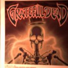 GRATEFUL DEAD DECAL not STICKER electric skeleton comix art VINTAGE