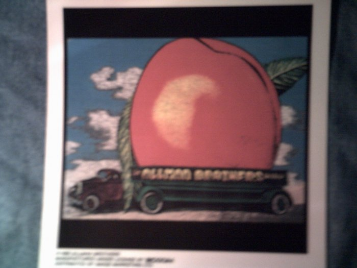 THE ALLMAN BROTHERS BAND DECAL not STICKER Eat a Peach gregg VINTAGE