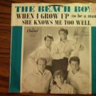 45 THE BEACH BOYS when I grow up b/w she knows me too well vinyl record W/PICTURE SLEEVE