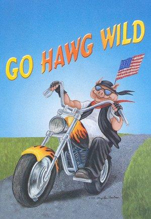 Go HAWG WILD ~ Harley Davidson Motorcycle ~ Large Flag