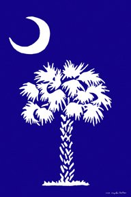South Carolina Large Flag
