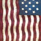 Old Glory Colonial Garden Mini Flag