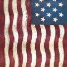 Old Glory Colonial Garden Mini Flag