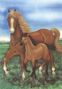 Mare & Foal Horse Garden Mini Flag