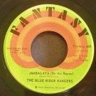 BLUE RIDGE RANGERS~Jambalaya (On the Bayou)~ Fantasy F-689 1972, 45