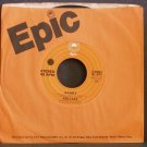 THE HOLLIES~Sandy~ EPIC 8-50086 1975, 45