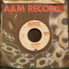 JAN BERRY~Skateboard Surfin' U.S.A.~ A&M 2020 1978, PROMO 45 VG++