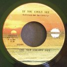 THE NEW COLONY SIX~If You Could See / Roll On~ Sunlight 1001 1971, 45