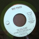ENGLAND DAN & JOHN FORD COLEY~What Can I Do with This Broken Heart~ Big Tree BT 17000 1979, PROMO 45