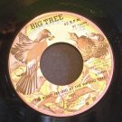 HOT~The Right Feeling at the Wrong Time~ Big Tree BT 16099 1977, 45