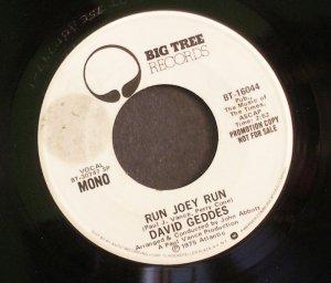 DAVID GEDDES~Run Joey Run~ Big Tree BT-16044 1975, PROMO 45