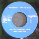 WALLY'S POLKA CHIPS~Why, Because I Love Polka / Ashes of Love Polka~ Hips E1H1S 45
