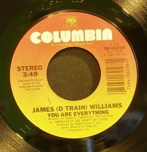 JAMES WILLIAMS~You Are Everything~Columbia 06256 (Funk) VG+ 45