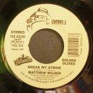 MATTHEW WILDER~Break My Stride~Private I 05509 (Synth-Pop) VG+ 45