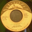 JOHN BACHMAN~Still Thinking of You~Sunrise 117 Rare 45
