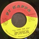 JIMMY BRISCOE & THE LITTLE BEAVERS~I'll Care for You~Pi Kappa 700 (Soul) VG+ 45