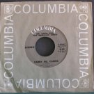DR. HOOK & THE MEDICINE SHOW~Carry Me, Carrie~Columbia 45667 (Classic Rock) VG++ 45