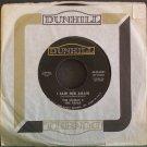 THE MAMAS & THE PAPAS~I Saw Her Again~Dunhill 45-D-4031 (Folk-Rock) VG++ 45