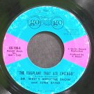 DR. WEST'S MEDICINE SHOW~The Eggplant That Ate Chicago~A Go Go Record 100 (Psychedelic Rock)  45