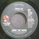 JIMMY HORNE~Without You~Sunshine Sound Disco 1015 (Funk) VG+ 45