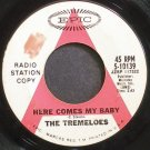 THE TREMELOES~Here Comes My Baby~EPIC 10139 (Rock & Roll) Promo Rare 45