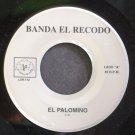 BANDA EL RECODO~El Palomino~La Sierra 112 M-  45