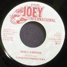 CONJUNTO PRIMAVERA~Dos Caminos~Joey International 781 M- 45