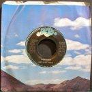 DAN HARTMAN~High Sign~Bluesky 2766 (Soft Rock) Promo M- 45