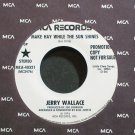 JERRY WALLACE~Make Hay While the Sun Shines~MCA 40321 Promo M- 45