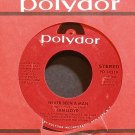 IAN LLOYD~Never Been a Man~Polydor 14319 (Soft Rock) VG++ 45