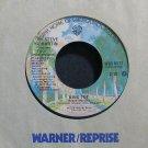 STEVE MARTIN~King Tut~Warner Bros. 8577  45