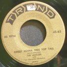 THE LANCERS~Sweet Mama Tree Top Tall~Trend 63  45