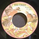 HOT~Angel in Your Arms~Big Tree 16085 (Soul)  45