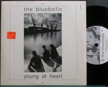 BLUEBELLS~Young at Heart~London 49 (Indie Rock) M- UK 45