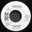 SKY KINGS~That Just About Says it All~Warner Bros. 17610 M- 45