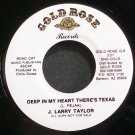 J. LARRY TAYLOR~Deep in My Heart There's Texas~Gold Rose 8 Promo VG++ 45