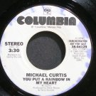 MICHAEL CURTIS~You Put a Rainbow in My Heart~Columbia 04129 Promo VG+ 45