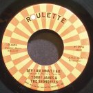 TOMMY JAMES & THE SHONDELLS~Say I am (What I am)~Roulette 4695  45