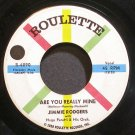 JIMMIE RODGERS~Are You Really Mine~Roulette 4090  45