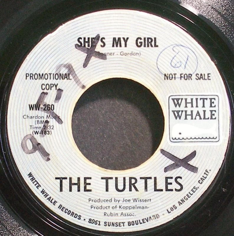TURTLES~She's My Girl~White Whale 260 (Psychedelic Rock) Promo VG+ HEAR 45