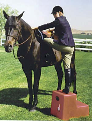 2 Step Horse Mounting block Tan High Country Plastics