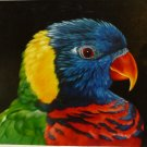 "New 20x24"" Hand-Made 'Colorful Bird' Oil Painting on Canvas"