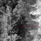 Taughanock Falls Overlook