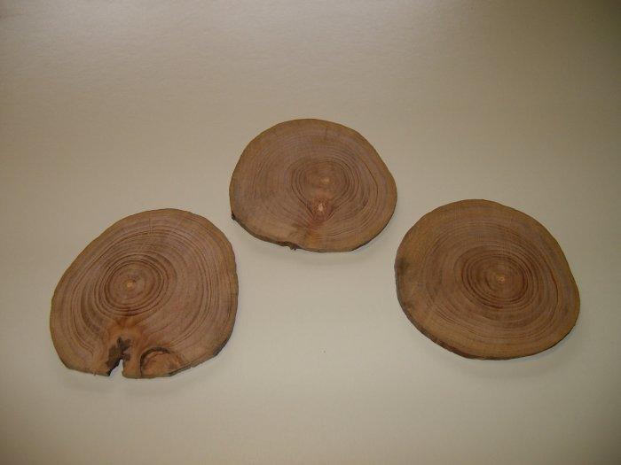 "Apple Wood Discs/Apple Wood Pendants/Apple Branchwood-3"" x 3"" x 1/8"" ( 75mm x 75mm x 3mm )"